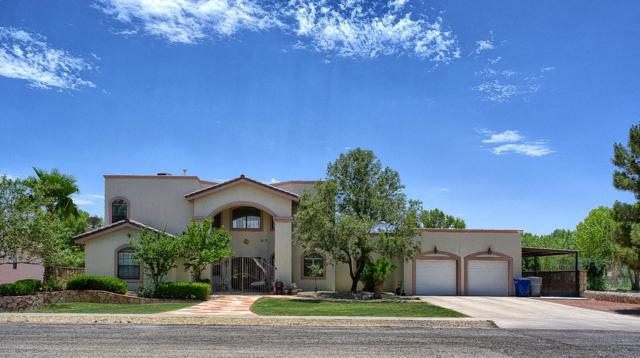 620 Timber Oaks Drive, El Paso, TX 79932 (MLS #810497) :: The Purple House Real Estate Group