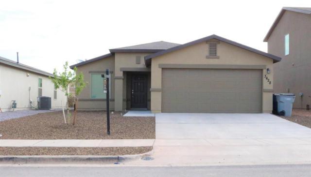 3428 David Palacio Drive, El Paso, TX 79938 (MLS #810499) :: The Purple House Real Estate Group
