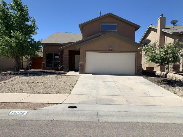 14236 Pacific Point Drive, El Paso, TX 79938 (MLS #810980) :: The Purple House Real Estate Group