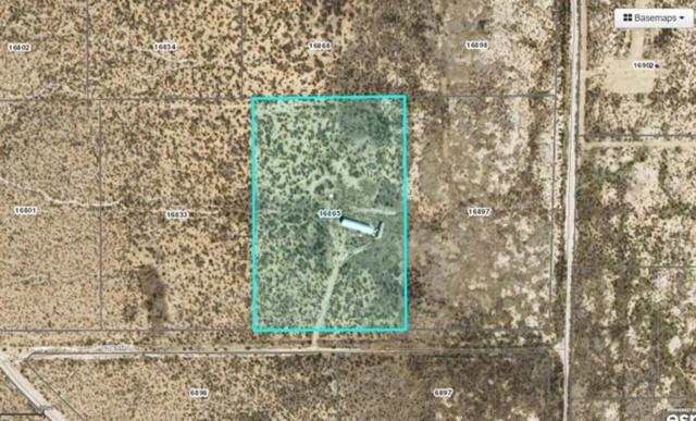 16865 Remine Avenue, El Paso, TX 79938 (MLS #811303) :: The Matt Rice Group