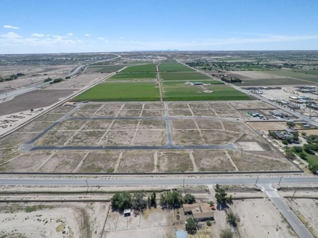 6321 Camino Nogal Drive, El Paso, TX 79932 (MLS #811462) :: Preferred Closing Specialists