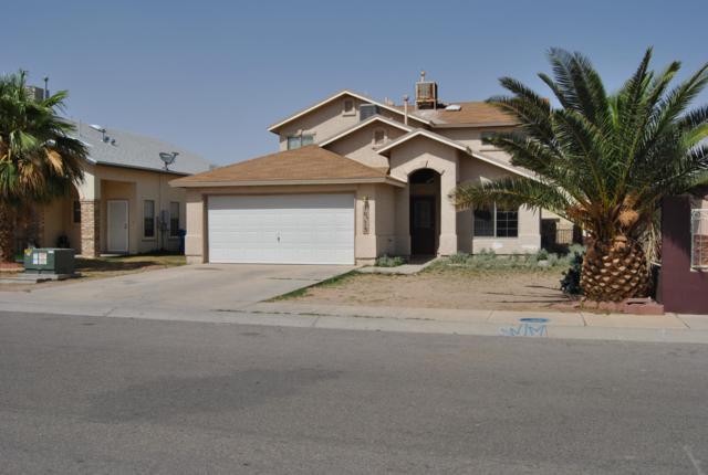 10213 Valle De Oro Drive, Socorro, TX 79927 (MLS #811550) :: The Matt Rice Group