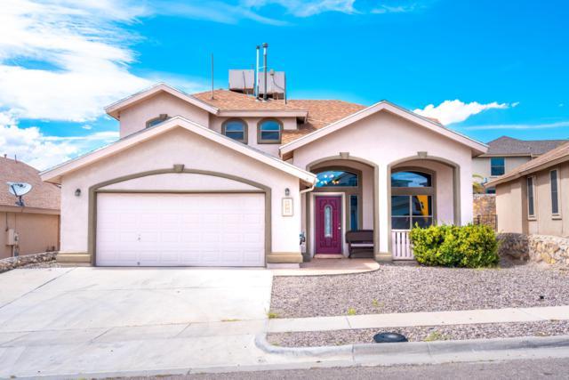 253 Northbrook Court, El Paso, TX 79932 (MLS #811671) :: Preferred Closing Specialists