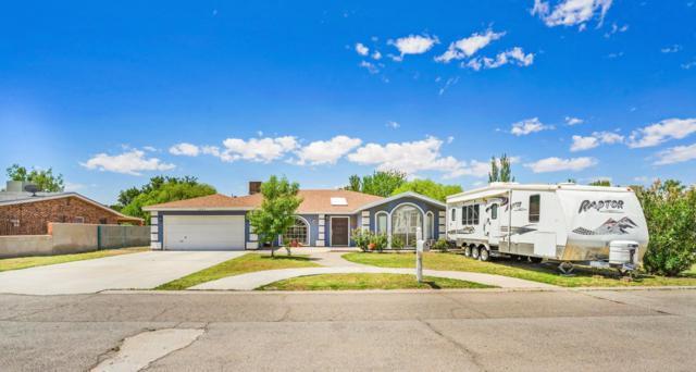 6043 Sorrel Drive, El Paso, TX 79932 (MLS #811674) :: Preferred Closing Specialists