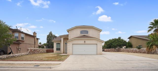 660 Laramie River Ave Avenue, El Paso, TX 79932 (MLS #811854) :: Jackie Stevens Real Estate Group