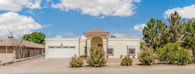729 Bluff Canyon Circle, El Paso, TX 79912 (MLS #811873) :: The Purple House Real Estate Group