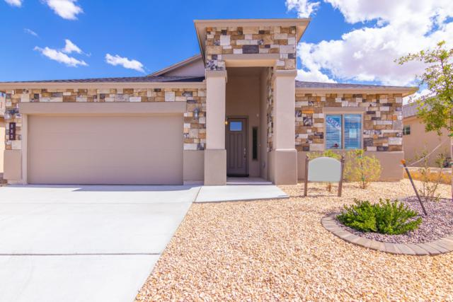 6055 Copper Hill Street, Sunland Park, NM 88063 (MLS #811889) :: Jackie Stevens Real Estate Group