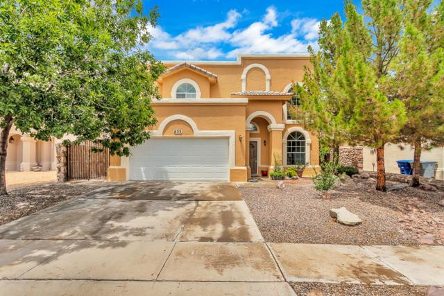 633 Laramie River Avenue, El Paso, TX 79932 (MLS #811972) :: Jackie Stevens Real Estate Group