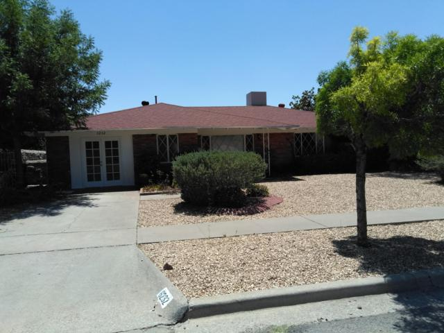 6232 Twilight Lane, El Paso, TX 79912 (MLS #812256) :: The Purple House Real Estate Group