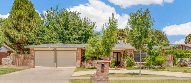 4201 Siete Leguas Road, El Paso, TX 79922 (MLS #812332) :: Jackie Stevens Real Estate Group