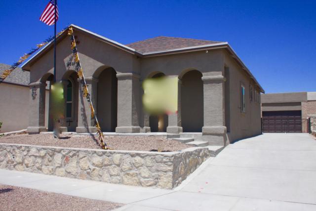 14361 Seth Payne Drive, Horizon City, TX 79928 (MLS #812370) :: Jackie Stevens Real Estate Group