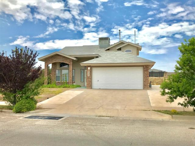 733 Maravillas Street, Horizon City, TX 79928 (MLS #812406) :: Preferred Closing Specialists