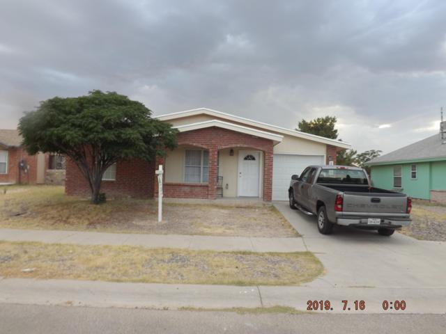 119 Barrel Cactus Drive, Horizon City, TX 79928 (MLS #812413) :: Jackie Stevens Real Estate Group