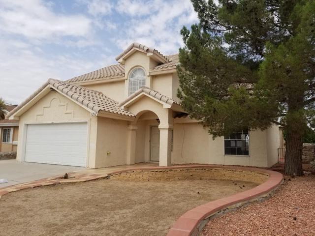 1217 Desierto Seco Drive, El Paso, TX 79912 (MLS #813193) :: The Purple House Real Estate Group
