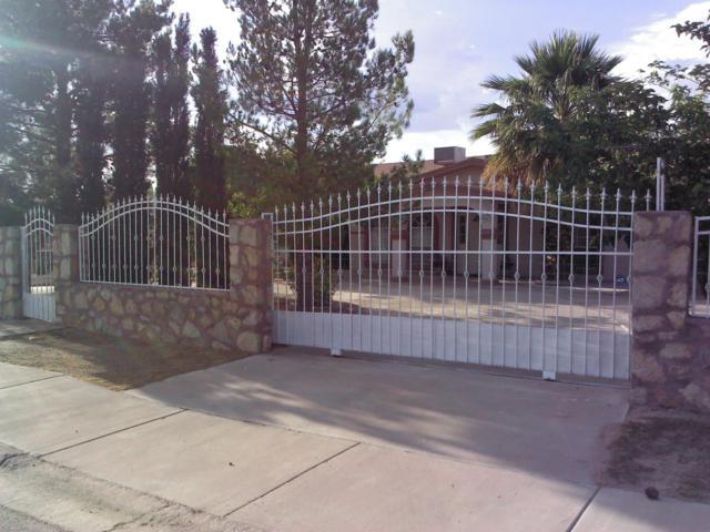 481 Uxmal Avenue, San Elizario, TX 79849 (MLS #813238) :: Preferred Closing Specialists