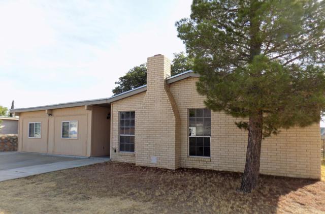 10444 Lambda Drive, El Paso, TX 79924 (MLS #813256) :: The Matt Rice Group