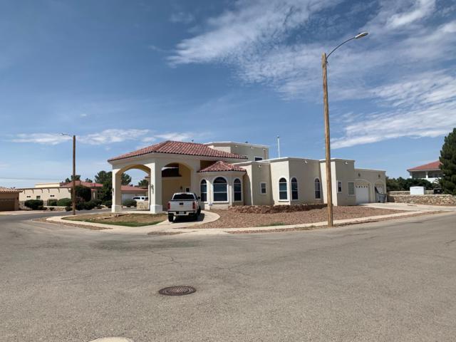 711 Maxey Marie Drive, El Paso, TX 79932 (MLS #813321) :: The Matt Rice Group
