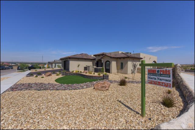 641 Jalynn Grace Drive, Canutillo, TX 79835 (MLS #813325) :: Preferred Closing Specialists
