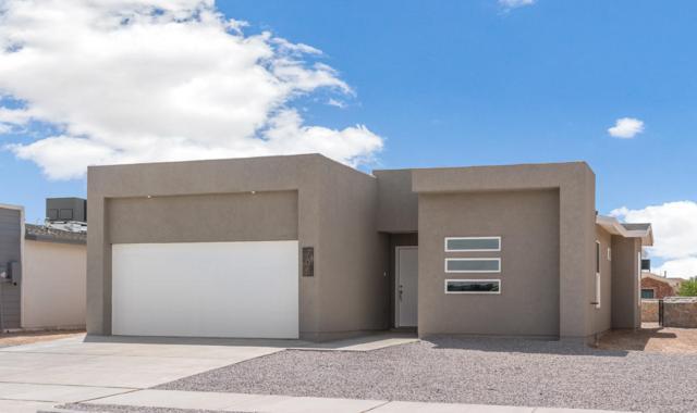 705 Nazareno Street, Horizon City, TX 79928 (MLS #813537) :: The Matt Rice Group
