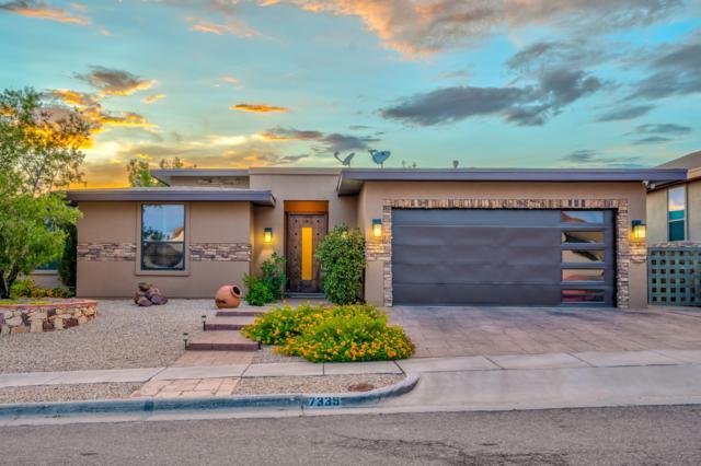 7339 Brays Landing Drive, El Paso, TX 79911 (MLS #813543) :: The Matt Rice Group