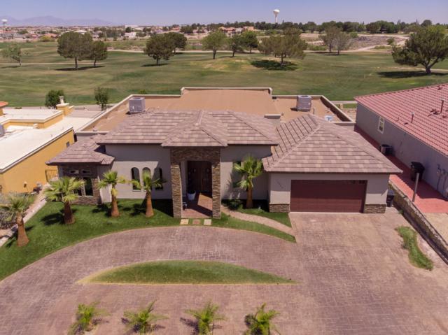 16025 Darley Drive, Horizon City, TX 79928 (MLS #813630) :: The Purple House Real Estate Group