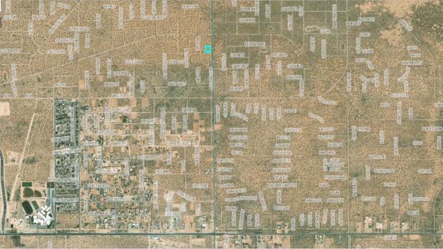 2 Ascencion, Horizon City, TX 79928 (MLS #813679) :: The Purple House Real Estate Group
