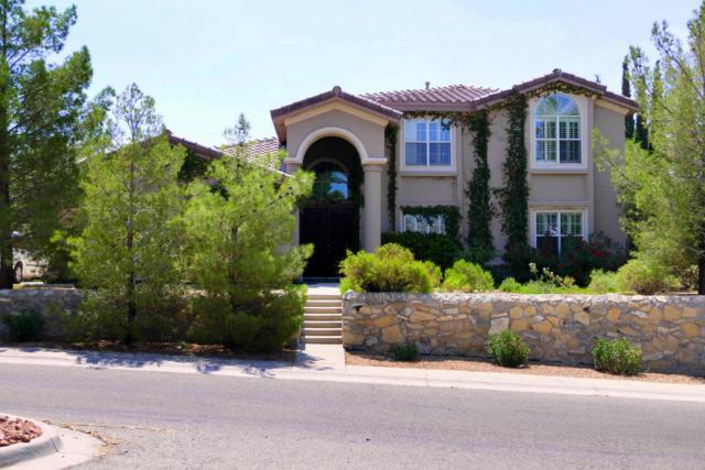 1064 Calle Parque Drive, El Paso, TX 79912 (MLS #813776) :: The Matt Rice Group