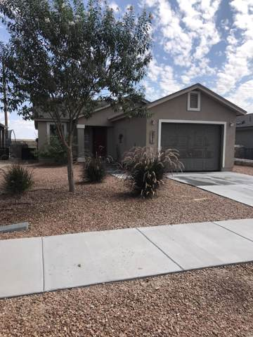 13627 Pecos River Road, Clint, TX 79836 (MLS #815402) :: The Matt Rice Group