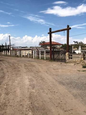 1000 Berry Road, Socorro, TX 79927 (MLS #815730) :: Preferred Closing Specialists