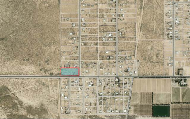 261 W Lisa Drive, Chaparral, NM 88081 (MLS #815805) :: Preferred Closing Specialists