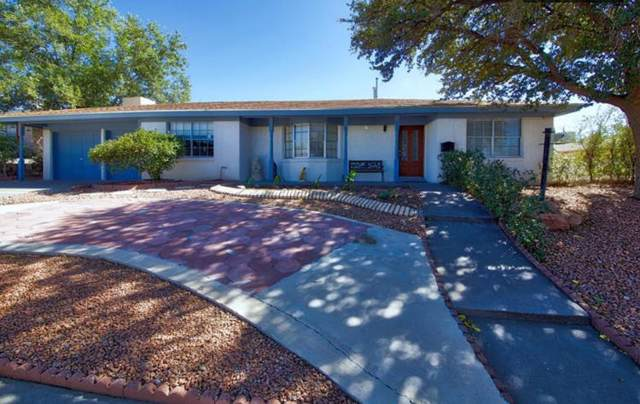 612 De Leon Drive, El Paso, TX 79912 (MLS #815851) :: The Purple House Real Estate Group