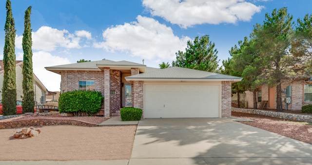 11694 John Weir Drive, El Paso, TX 79936 (MLS #815862) :: The Purple House Real Estate Group