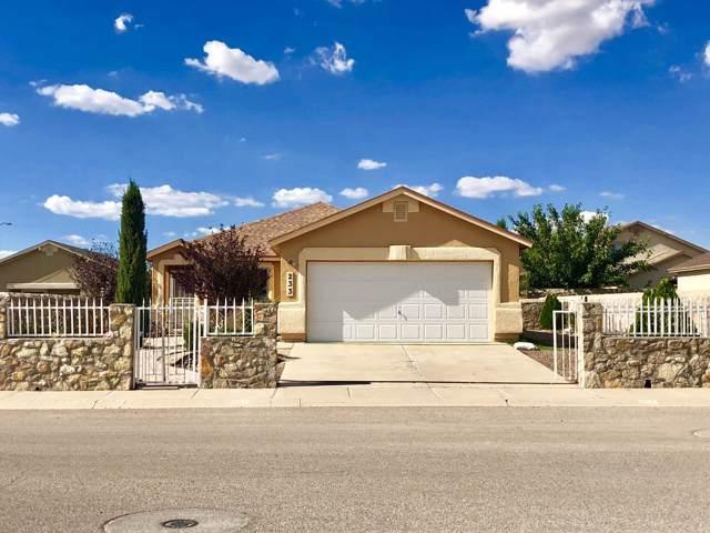 233 Flor Scabiosa Drive, Socorro, TX 79927 (MLS #816678) :: Preferred Closing Specialists