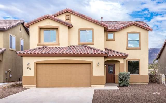 2050 Bluff Creek Street, El Paso, TX 79911 (MLS #816805) :: The Matt Rice Group