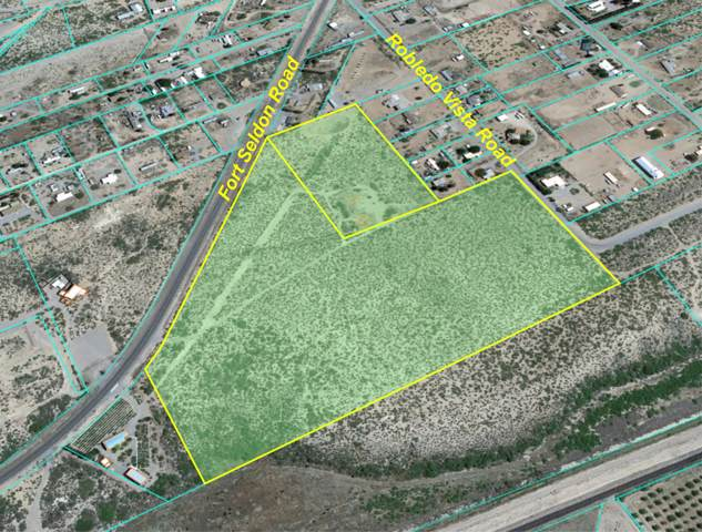 1201 Fort Selden Road, Las Cruces, NM 88007 (MLS #816813) :: Jackie Stevens Real Estate Group
