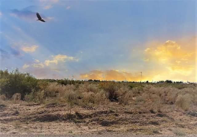 14625 Sam Hawken Road, Clint, TX 79836 (MLS #817022) :: The Matt Rice Group