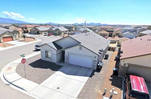 5889 Alpha Circle, Santa Teresa, NM 88008 (MLS #817173) :: The Purple House Real Estate Group