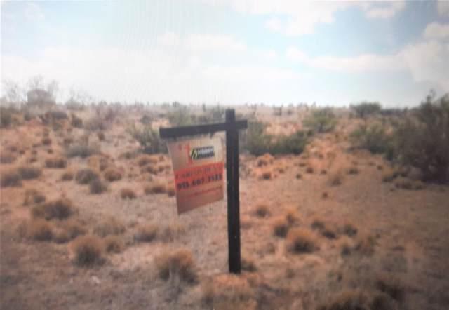 4 Deer Mountain #2, Ft Hancock, TX 79839 (MLS #817211) :: Mario Ayala Real Estate Group