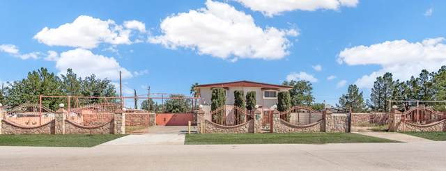 10915 Lydia Rd Road, Socorro, TX 79927 (MLS #817218) :: The Purple House Real Estate Group
