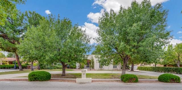 749 Willow Glen Drive, El Paso, TX 79922 (MLS #817262) :: The Matt Rice Group