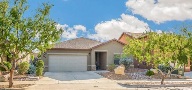 7328 Autumn Sage Drive, El Paso, TX 79911 (MLS #817362) :: Preferred Closing Specialists