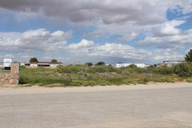 14741 Bocalusa Avenue, Clint, TX 79836 (MLS #817419) :: The Purple House Real Estate Group