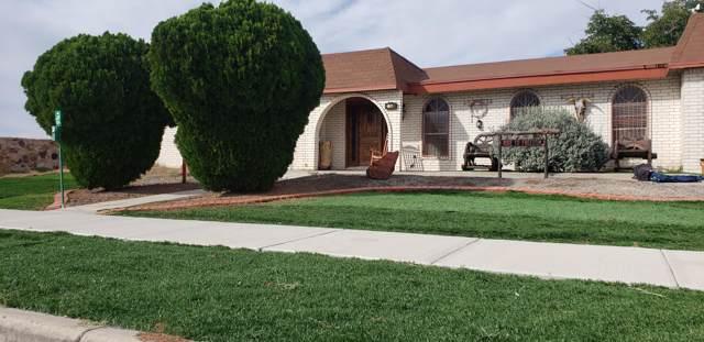 233 Duanesburg Street, Horizon City, TX 79928 (MLS #817799) :: Preferred Closing Specialists