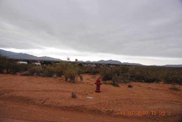 424 E Wicker Road, Chaparral, NM 88081 (MLS #818331) :: The Matt Rice Group