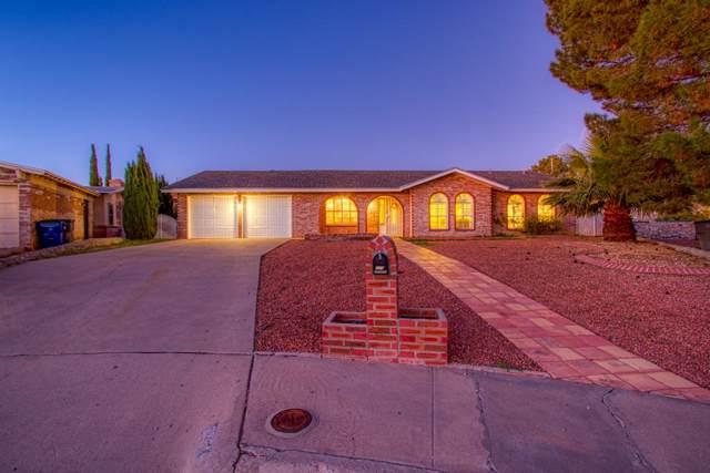 6733 Mariposa Drive, El Paso, TX 79912 (MLS #818611) :: Preferred Closing Specialists