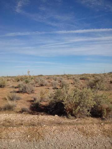 14473 Bradley Road, El Paso, TX 79938 (MLS #818716) :: Preferred Closing Specialists