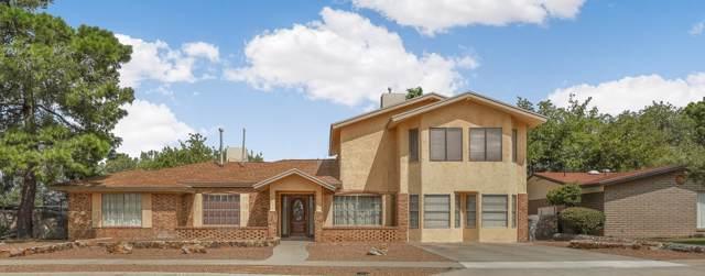 6969 Granero Drive, El Paso, TX 79912 (MLS #819022) :: Preferred Closing Specialists
