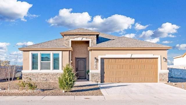981 Pellegrino Avenue, El Paso, TX 79932 (MLS #819050) :: Preferred Closing Specialists