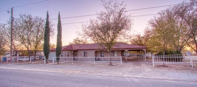 12801 Crisantemo Drive, San Elizario, TX 79849 (MLS #819125) :: Preferred Closing Specialists