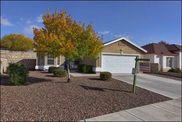 6812 Jordynn Emily Lane, El Paso, TX 79932 (MLS #819206) :: Preferred Closing Specialists